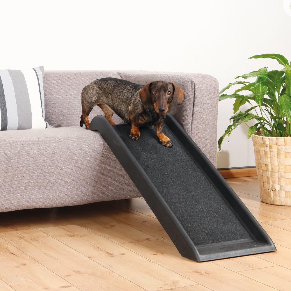 Small dog ramp