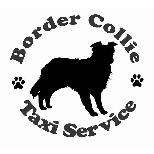 Billabone Border Collie