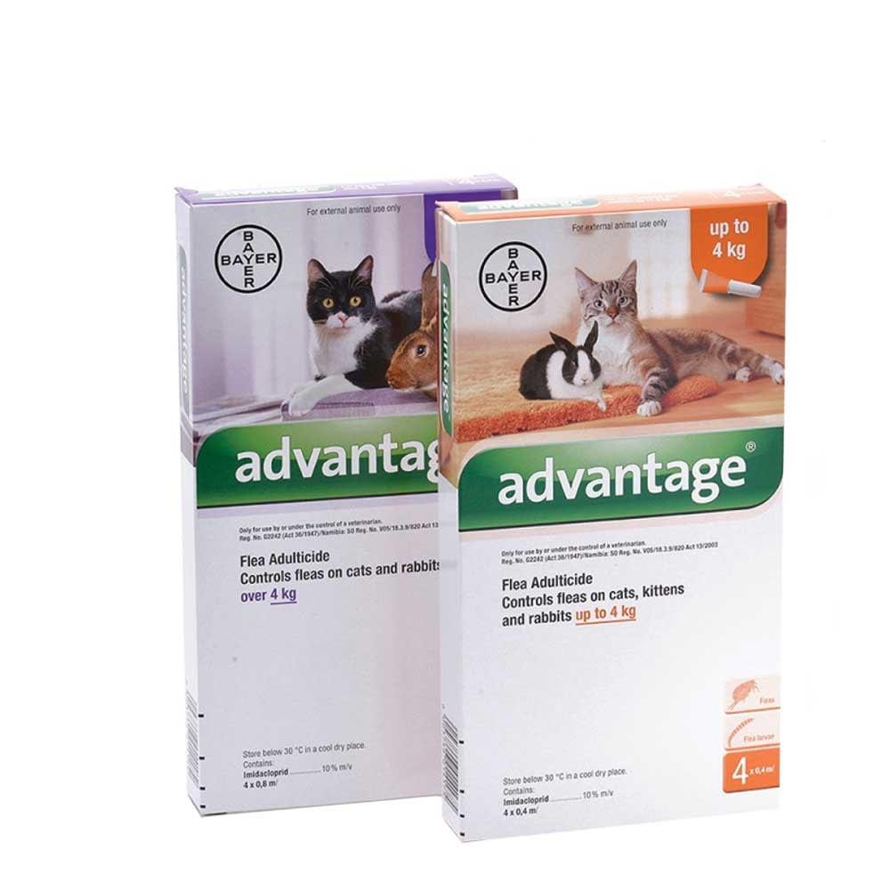 Advantage for cats
