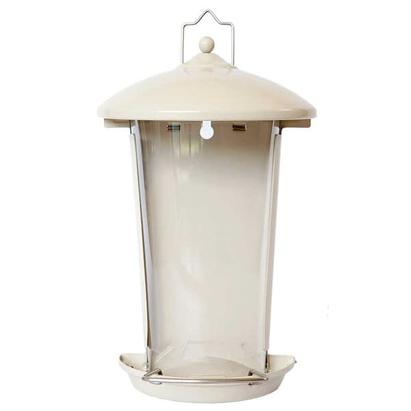 Westerman's Wall Seed Feeder