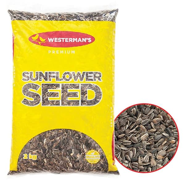 Westerman's Striped Sunflower Seed