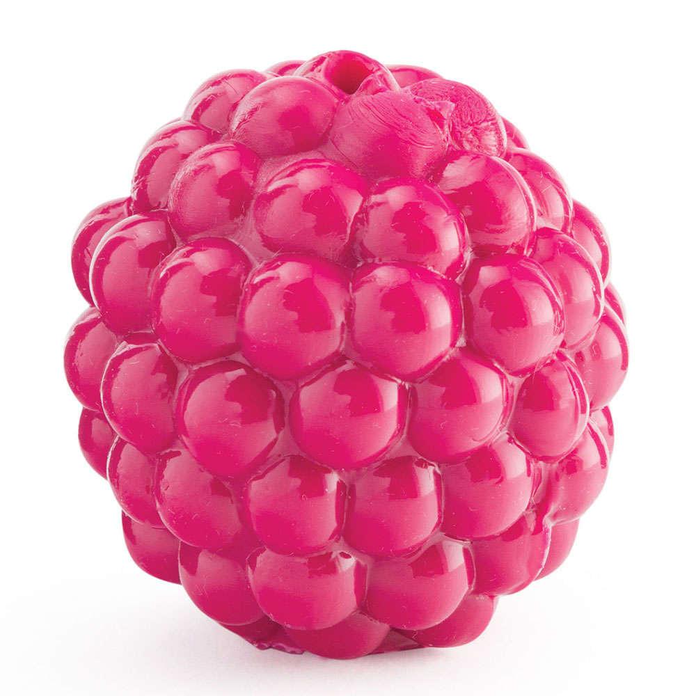 Planet Dog Rasberry Chew Toy