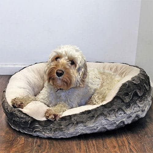 Rosewood Snuggle Oval Plush