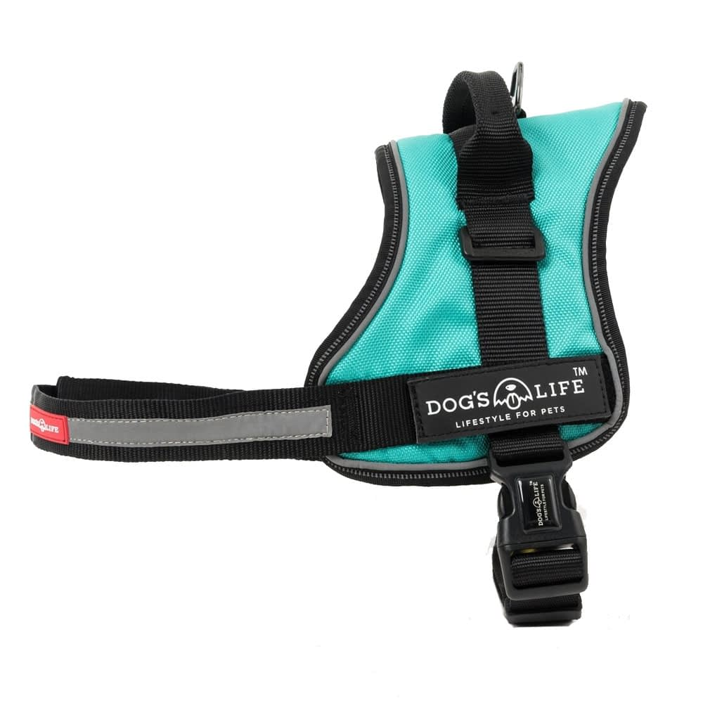 Dog's Life Active No Pull Control Handle Harness - Turquoise
