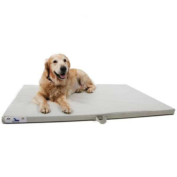 Dog-O-Pedic Hush Puppy Memory Foam Mattress
